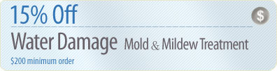 Cleaning Coupons | 15% off mold & mildew removal | Brooklyn Rug Cleaners